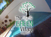 GreenVillageNew